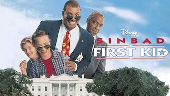 El hijo del presidente (1996)