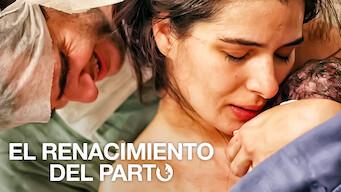 El renacimiento del parto (2013)